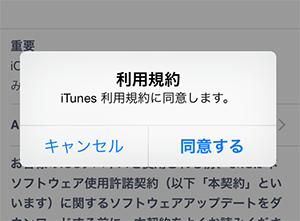 iOS8_子供用AppleID_iTunes利用規約確認画面