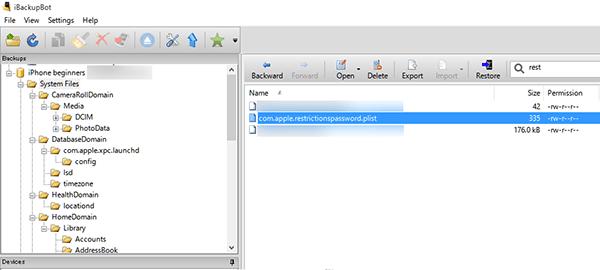 iBackupBot画面_機能制限パスコードファイル