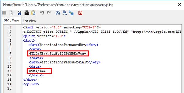 restrictionpassword内容