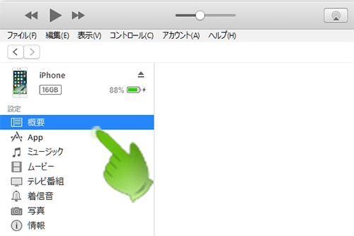 iTunes_iPhone概要項目