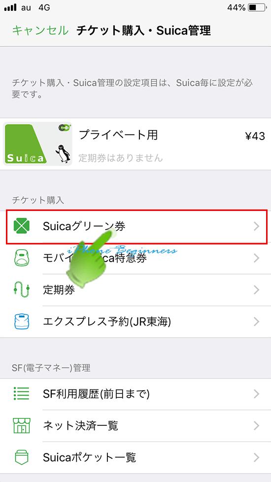 チケット購入画面_suicaグリーン券